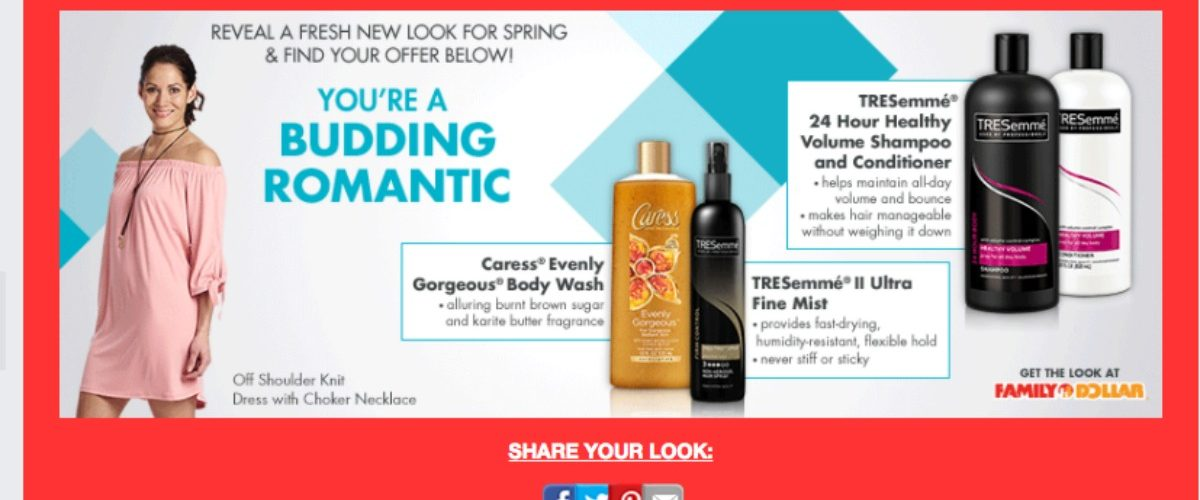 Reveal a Fresh New Look for Spring
